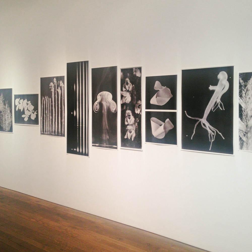 the photo exhibition archive-Deutsche Borse London-3