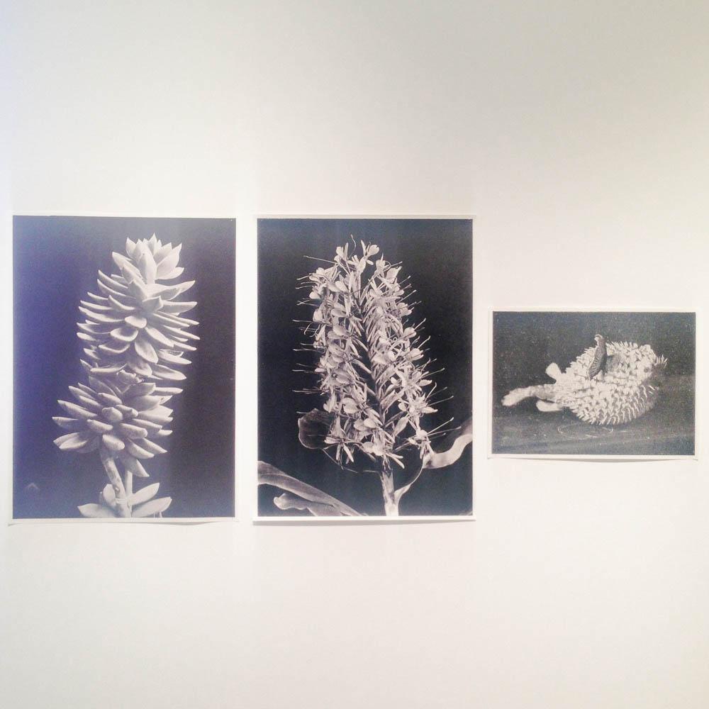 the photo exhibition archive-Deutsche Borse London-6