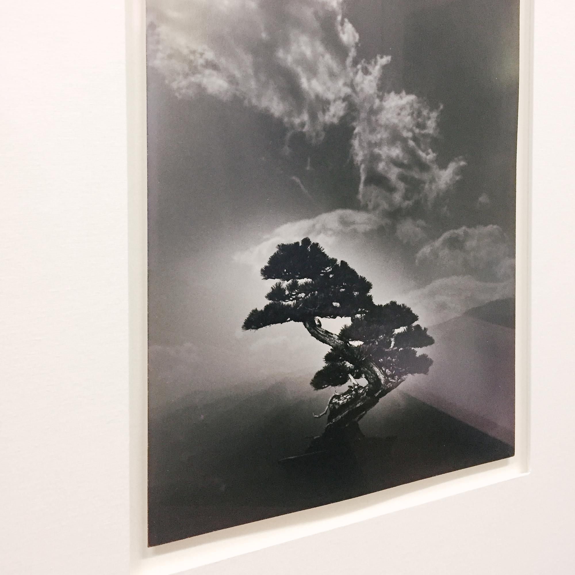 thephotoexhibitionarchive_yamamoto-4