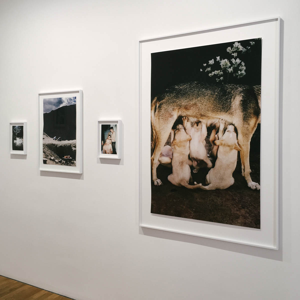 the photo exhibition archive-tobias kruse-2